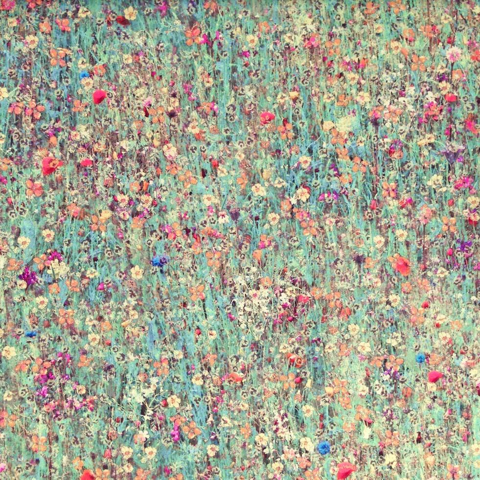 mawston meadow